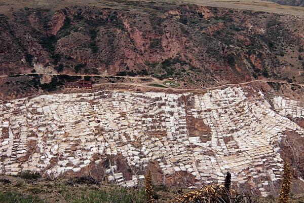 해발 3천미터의 고산지대에 있는 살리네라스 염전으로 4천개의 소금밭으로 이뤄져 있다