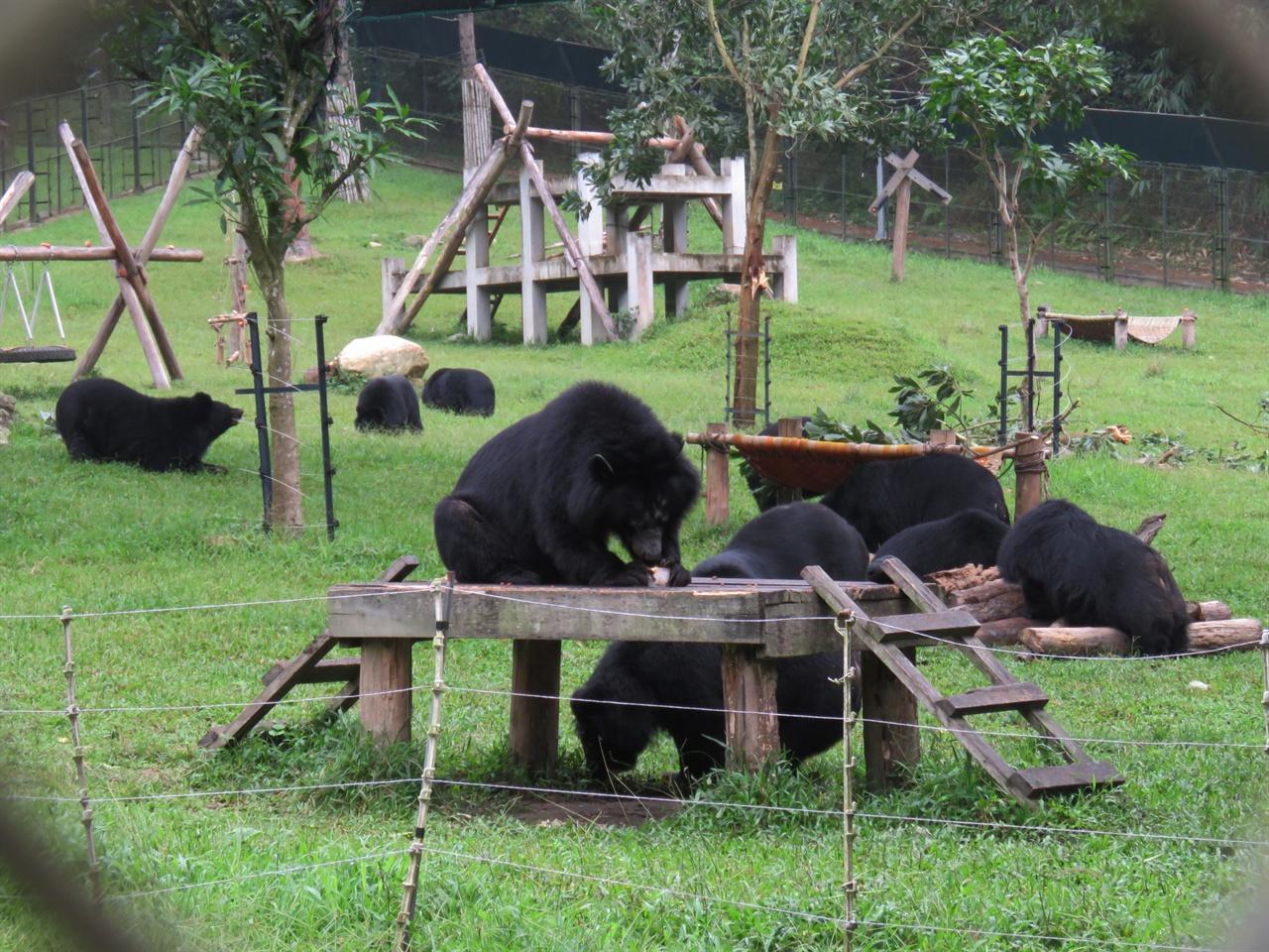 동물원을 방불케하는 시설을 갖춘 땀다오 생츄어리