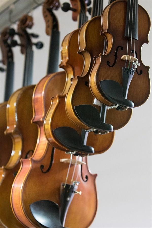 바이올린의 모습은 흡사 돼지가 거꾸로 매달려 있는 것 처럼 정육점을 연상시켰다.