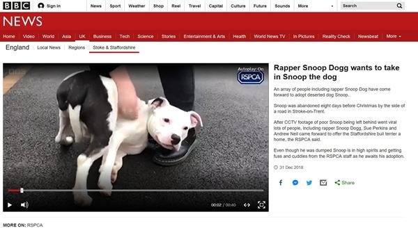 유기견 '스눕'이 버려지는 영상을 보도한 영국 BBC 뉴스 갈무리.