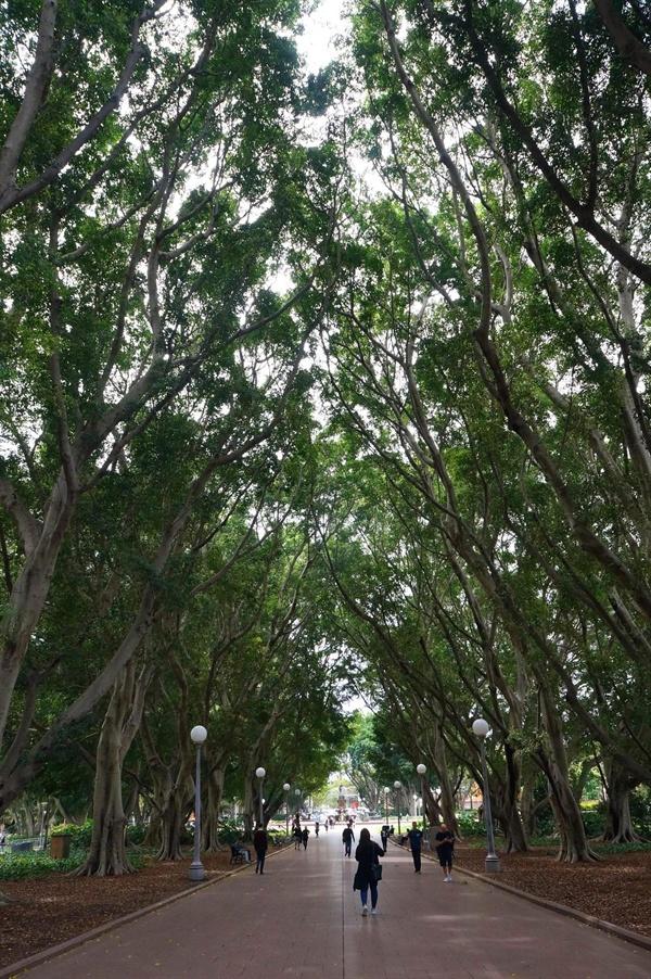 시드니 하이드 공원