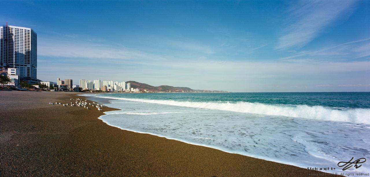 강동동 바다의 모습 (Horseman612/Portra400)바람이 거세지 않았음에도 파고가 꽤 높았다.