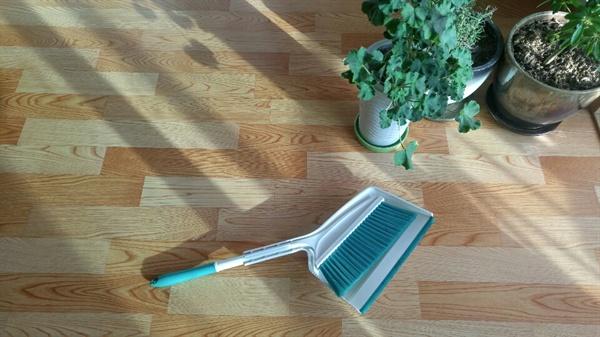 묵혀둔 빗자루를 꺼내 씻었습니다. 청소기 대신 비질을 시작했습니다.