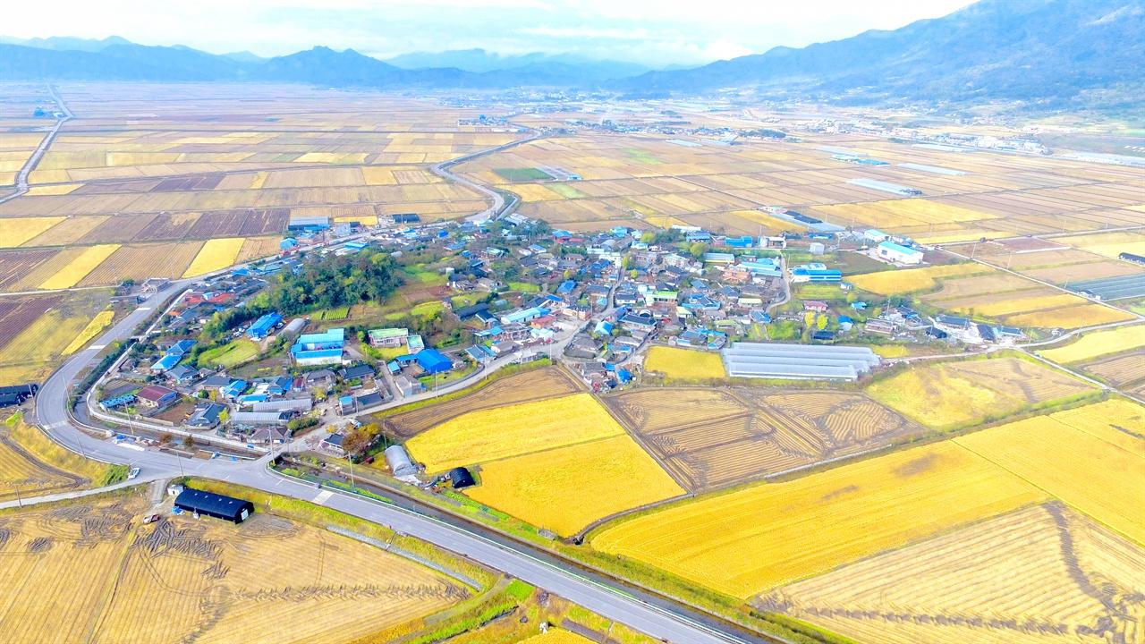 전남 보성군 조성면 용전리 대흥 마을(최근 모습) 내가 태어나고 자란 고향