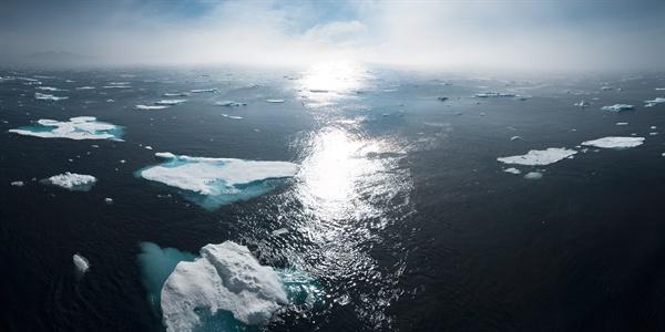 기후변화는 이미 인류가 당면한 문제다. 그것도 생존을 위협하는.