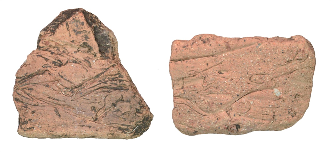 〈사진142-3〉 제주 고산리 유적 제2구역에서 나온 고산리식토기 조각. 《제주 고산리유적Ⅰ(2구역)》(2017, 제주고고학연구소)