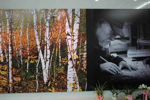 자작나무 아래-가을