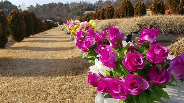 추모공원을 찾은 성묘객들은 추석 때 꽂아 놓은 조화 꽃을 새꽃으로 교체하는가 하면, 집에서 준비한 제사음식으로 성묘를 마쳤다.