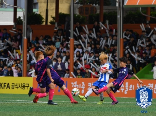 대한축구협회 전국 유소년축구대회