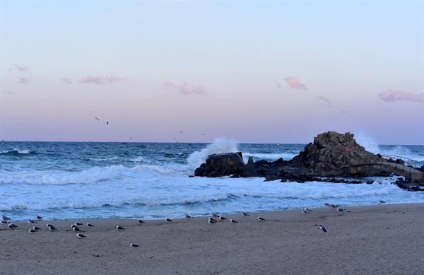 파도 사천바다