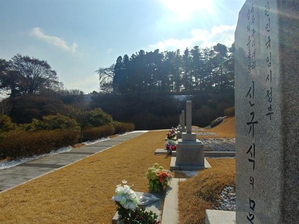 애국지사 신규식 선생 묘에서 바라본 친일파들 무덤. 사진 속 좌측 상단에 소나무 사이 비어있는 언덕이 제2장군 묘역이다.