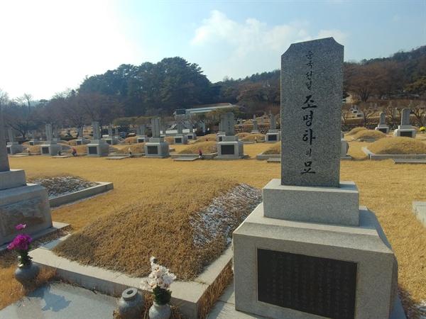 순국선열 조명하 선생의 묘에서 바라본 친일파 무덤. 사진 속 좌측 소나무가 우거진 곳이다.