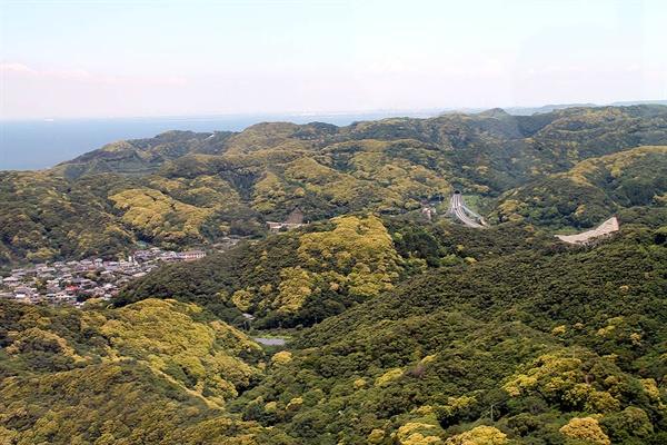 일본 치바현 노코기리산에서 내려다본 전망. 바늘 꽂을 틈도 없겠다 싶을 정도로 나무가 빽빽이 들어차있다.