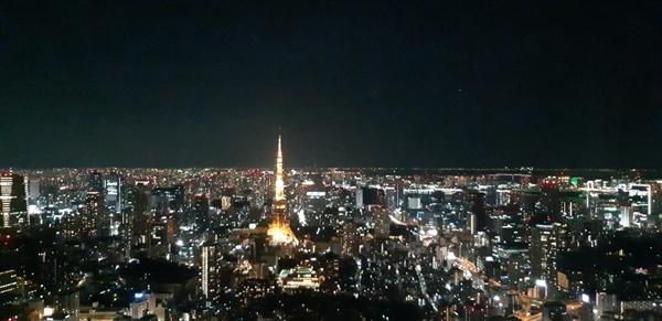 일본 도쿄 야경