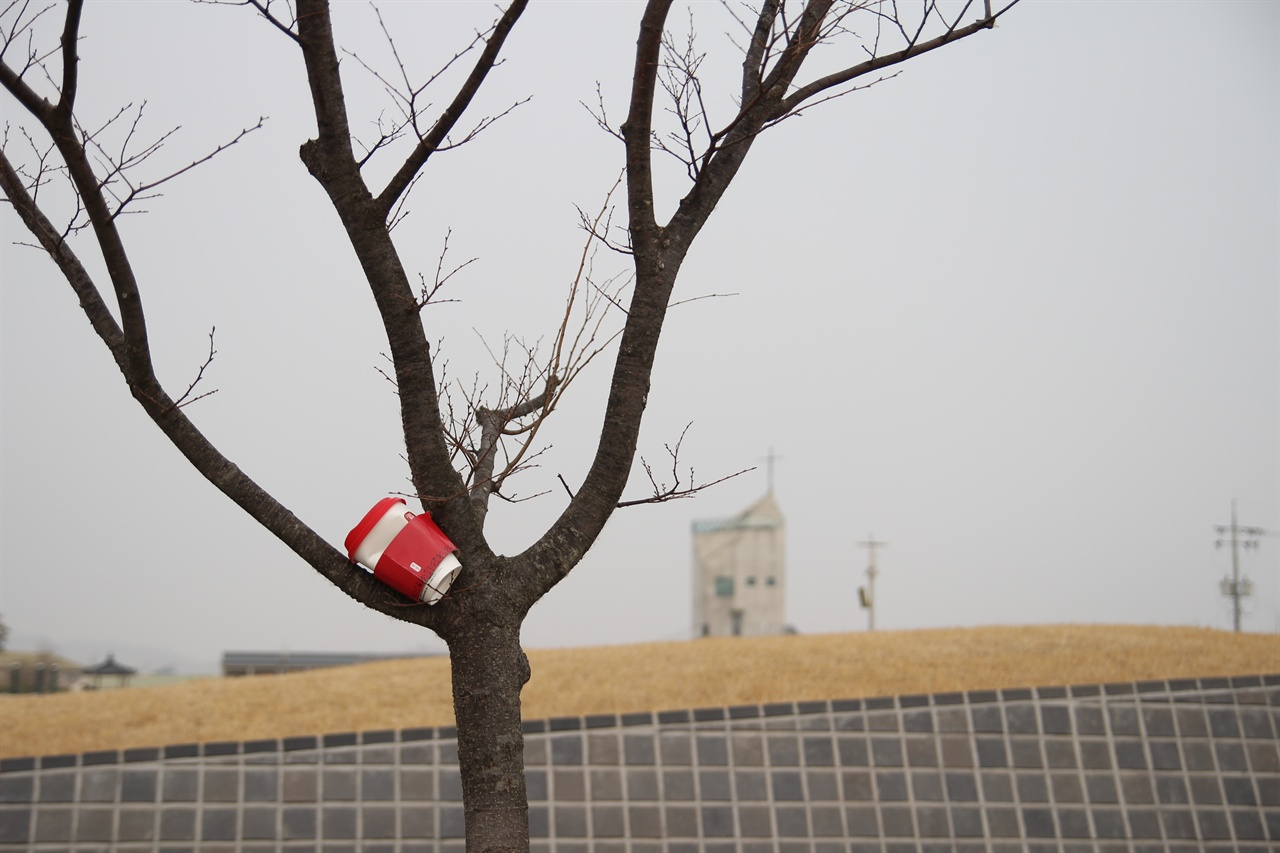 신리성지 내에 아무렇게 버려진 쓰레기 신리성지 내에 나무에 끼워 버려진 쓰레기
