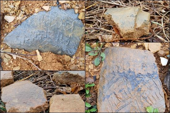 ▲ 사주리 174번지에서 발견 된 기와 조각들.