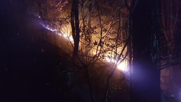 3월 13일 오후 8시경 창원 장복산 기슭에서 화재가 발생했다.