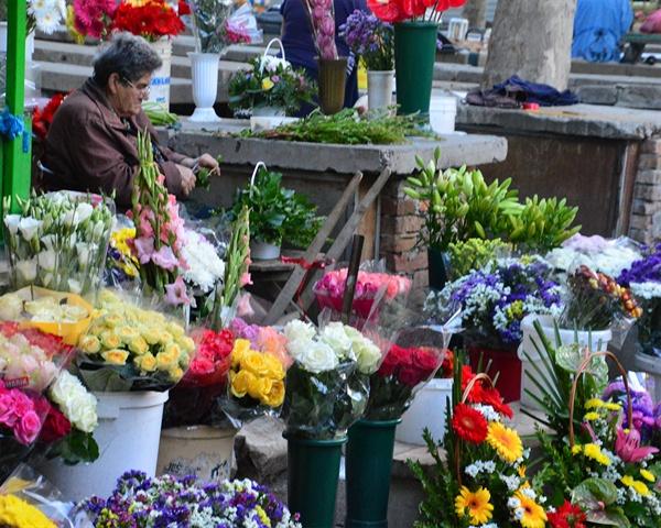 스플리트 꽃시장. 아침부터 꽃을 사는 사람들은 마음이 평화로운 사람들일 것이다.