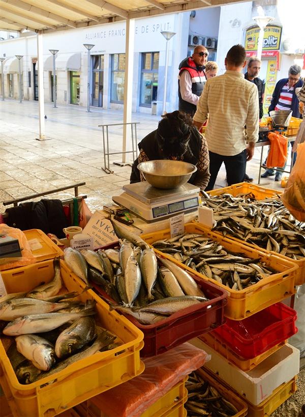 스플리트 생선시장. 농어, 아귀, 오징어, 새우 등이 거래되는 활기찬 시장이다.