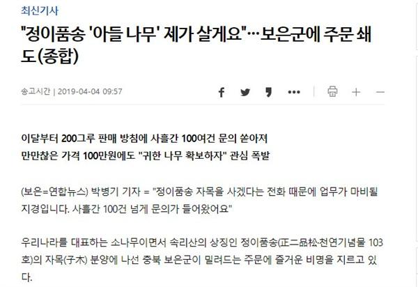 연합뉴스 <정이품송 '아들 나무' 제가 살게요'> 기사 캡처