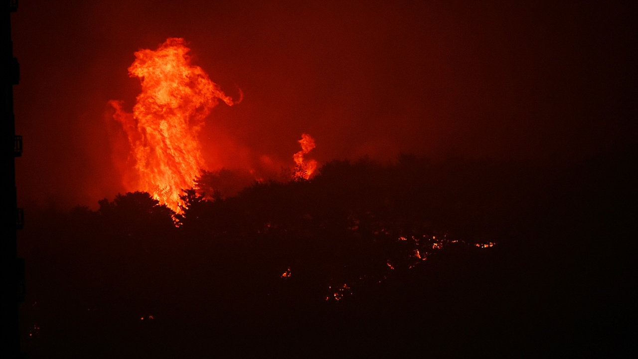 """보광사 방향 불길 낙산사가 전소된 기억이 다시 재현되는 것인가. 대단히 큰 불기둥이 하늘로 솟구치기 시작하자 """"저기 보광사 타는 거 같다""""는 여성들의 외침이 들렸다."""