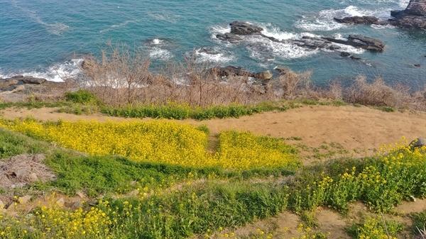 마을을 지나 해변으로 간다. 이곳저곳 다니며 쉬엄쉬엄 돌아보는데 한 시간 남짓 걸린다.