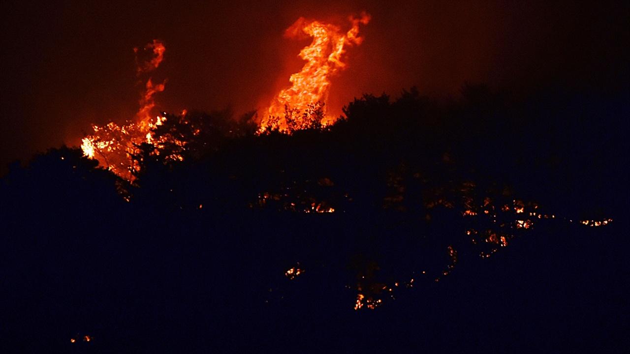 타오르는 산불 누가 보더라도 송림이 아닌 그 너머 건물 같은 게 탄다고 생각할 광경이다. 이 화염이 치솟은 지점을 가리키려 보광사가 탄다고 했다.