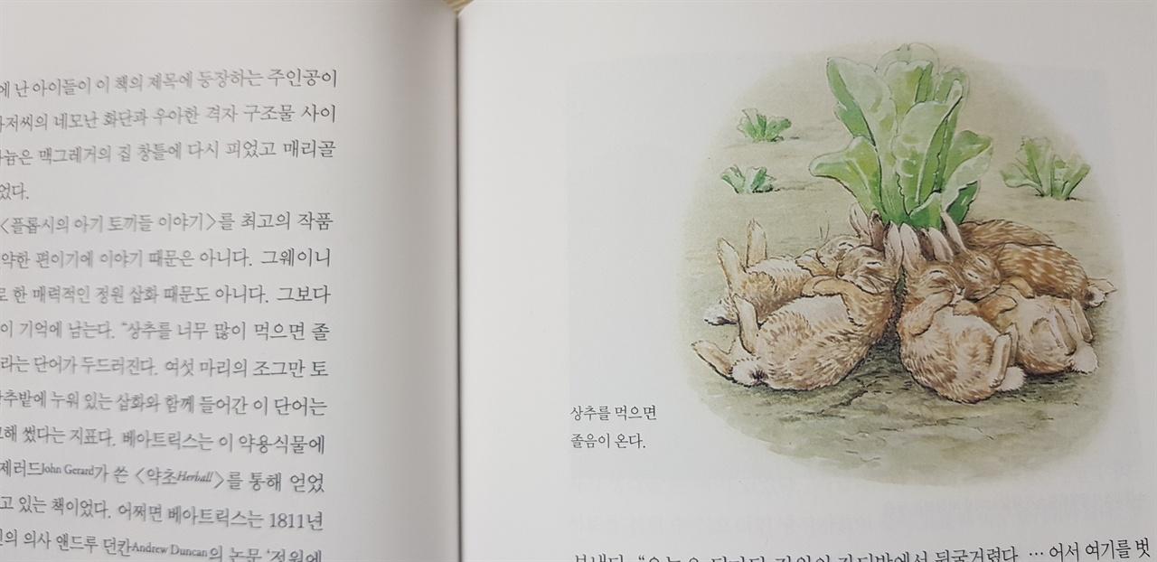 상추를 많이 먹으면 졸음이 온다, 포터는 자신이 터특한 식물에 관한 지식을 동화에 곧잘 사용하곤 했다