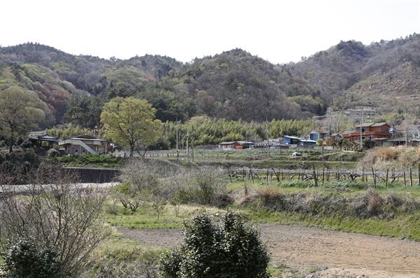 보성 쇠실마을 전경. 산으로 둘러싸인 마을이 평온해 보인다. 큰 느티나무 옆에 마을회관이 자리하고 있다.
