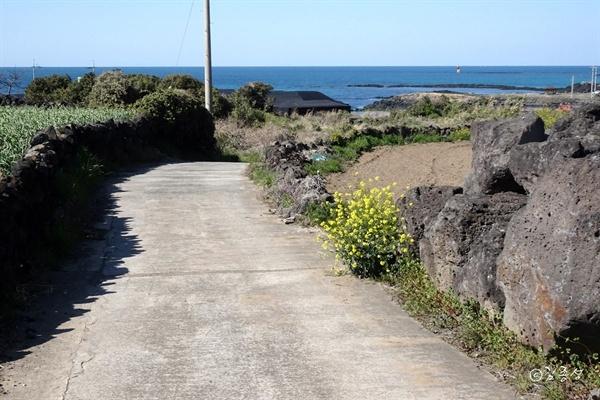 올레길따라 해안가를 걷다보면 만나는 소담한 마을 북촌리.
