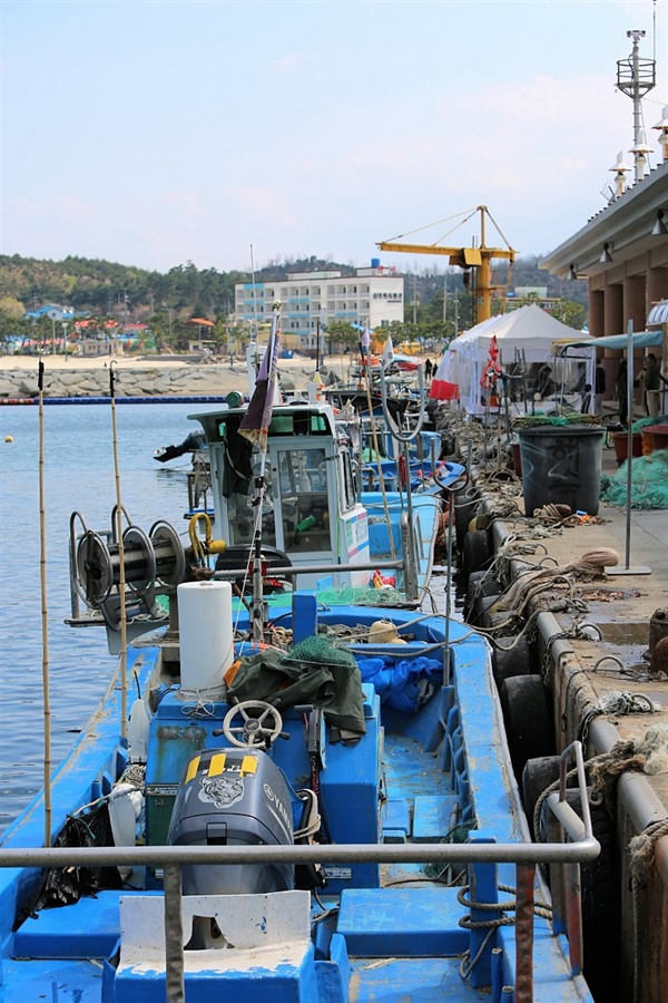 양양비치마켓 항구옆에서 열리는 양양비치마켓