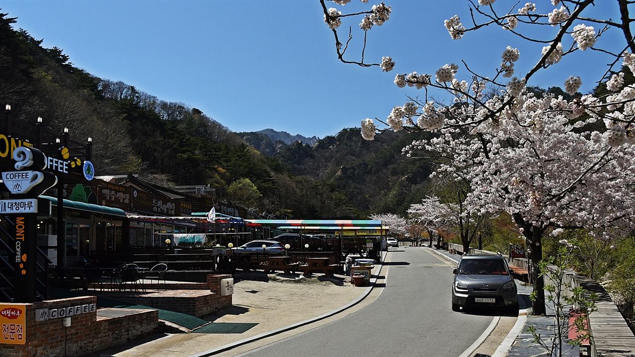 발길이 끊긴 식당가 식당 주인들의 차만 한가한 식당가 도로에 주차되어 있다. 어쩌다 두 세 명 이 길을 걷는 탐방객이 보였으나 식사를 하려는 탐방객은 만날 수 없었다.
