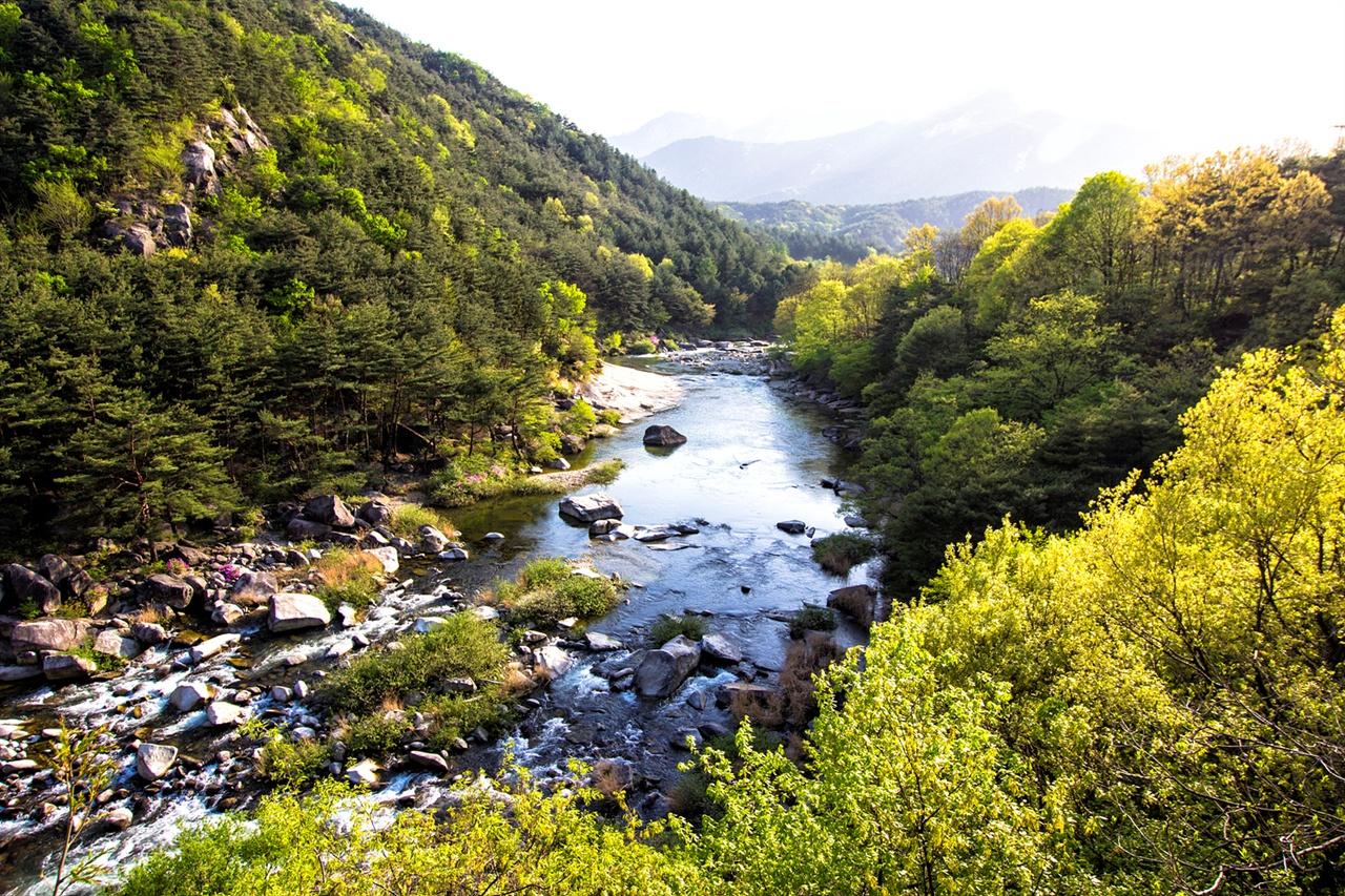 물은 산이 깊어 사철 마르지 않는 월성계곡 이 계곡은 남덕유산의 삿갓샘에 뿌리를 둔 물줄기가 황점마을에서 출발해 월성천을 지나 용암정까지 흐른다.