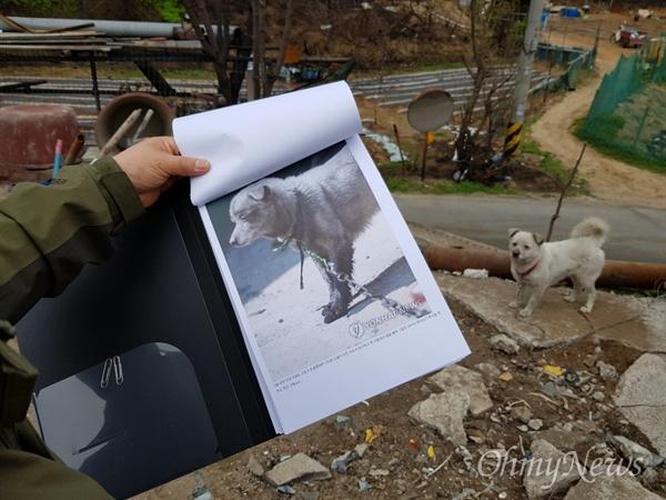 이번 동해안 산불로 피해를 입은 강원도 속초시 장사동 이재민 고인숙씨는 지난 5일 언론이 보도한 '강아지가 목줄에 묶여 화마를 못 피했고, 불길에 발을 그을렸다'는 내용이 잘못됐다고 했다. 그는