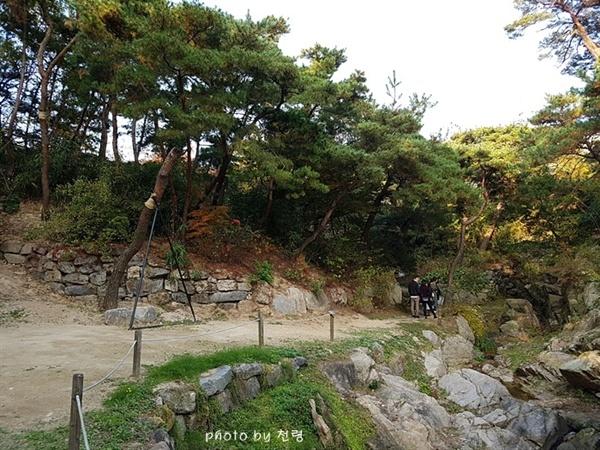 용두가산 바깥의 시선을 차단하고 비보의 역할로 조성됐다.