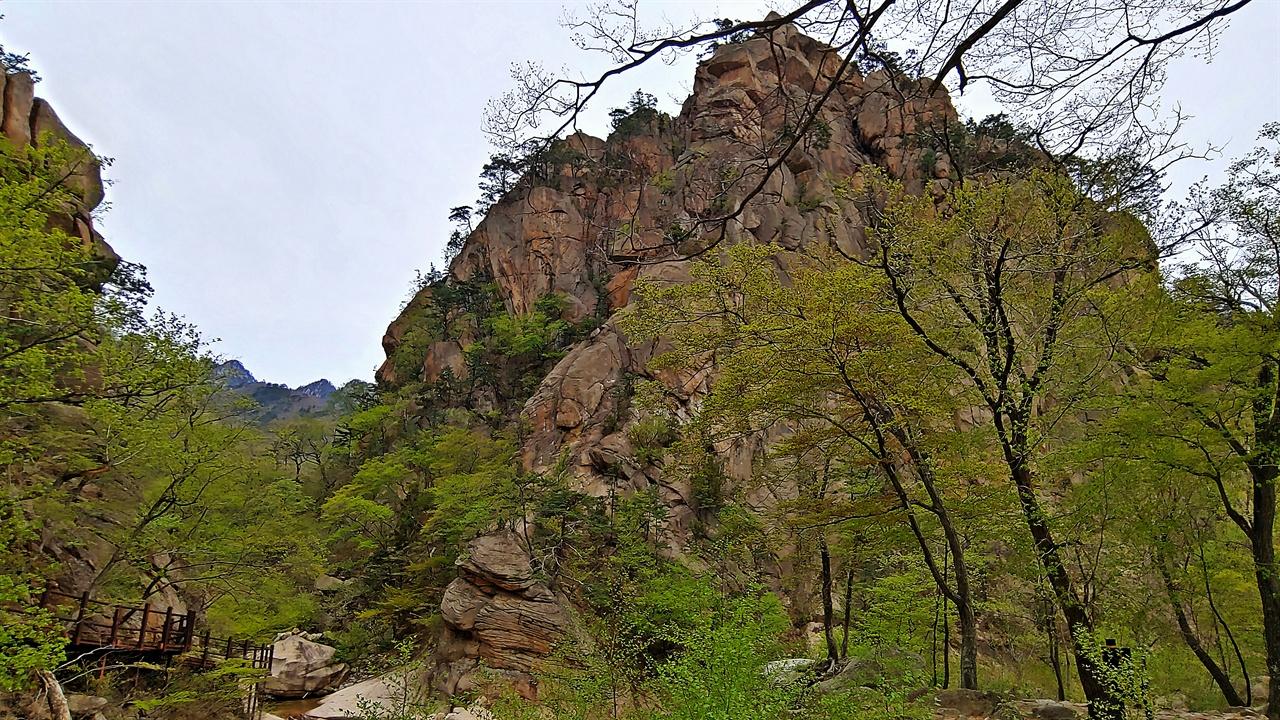 주전골의 봄 용소폭포에서 조금 내려오면 12폭포와 계곡이 갈라지는 곳에서 다리를 건너며 용소폭포 방향으로 돌아서서 바라 본 풍경이다.