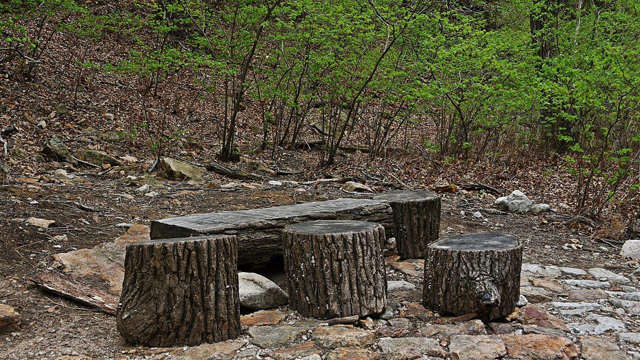 주전골 쉼터 넘어진 참나무로 쉼터를 하나 만들어 놓았다. 바로 앞에 독주암이 당당하게 서있다.