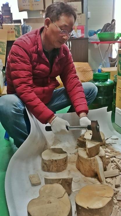 황칠 제품을 만들기 위해 황칠나무를 손질하고 있다. 황칠 제품에는 황칠나무의 모든 게 다 들어간다.