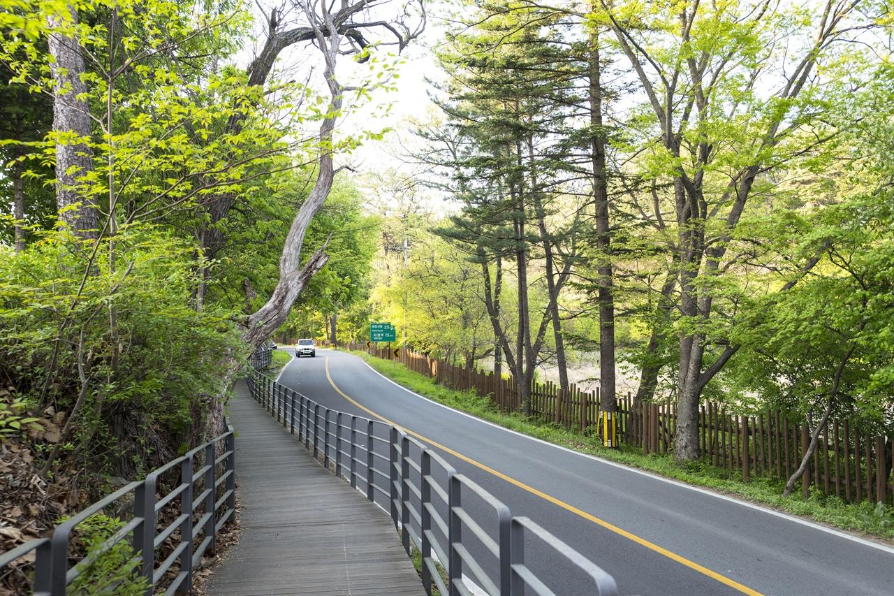 지난해 말 국립수목원에서 봉선사에 이르는 총 3km의 숲길이 새로 조성됐다. 이로써 그동안 차로 다녀야했던 전나무숲길을 걸어서도 즐길 수 있게 됐다.