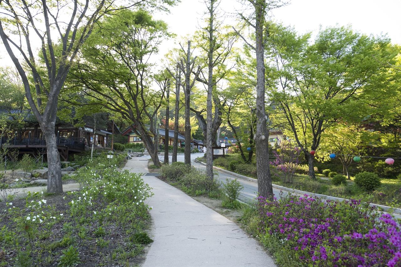광릉숲길이 끝나는 곳에는 광릉의 원찰인 천년 사찰운악산 봉선사가 자리잡고 있다. 해마다 7월이면 연꽃축제가 열린다.