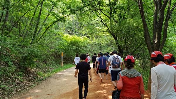 계족산 맨발마라톤 참가자들이 황토길을 맨발로 걷고 있다.