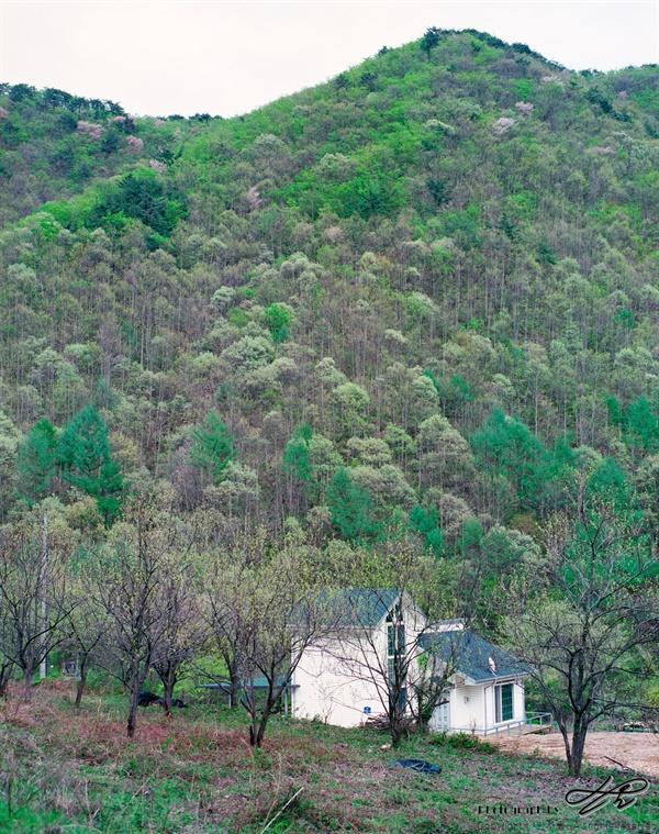 5월의 숲 (Pro400H)운장산 갈크미재를 내려오며