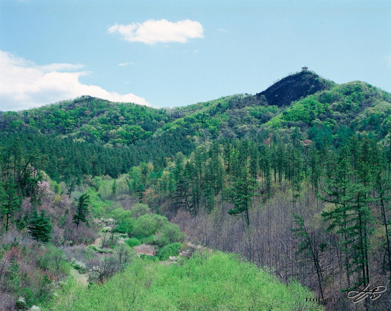 마이산의 숲 (Pro400H)비룡대와 전망대