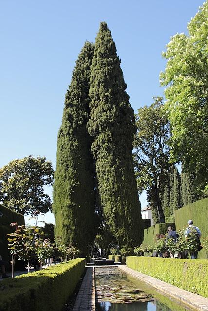 14세기에 지어진 왕가의 여름 별궁으로 왕들이 더위를 피해 휴식하던 곳이었다. 시에라네바다 산맥의 눈 녹은 물을 이용해 분수와 수로를 만들어 놓아 '물의 정원'으로도 불린다