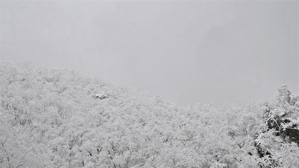 겨울 한계령 눈 덮인 한계령을 넘을 때면 사람들은 저마다 무슨 생각을 할까? (사진제공 정덕수)