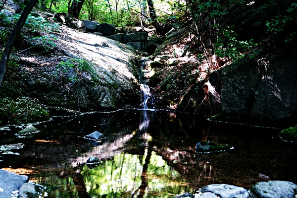 삼청공원 계곡의 맑은물