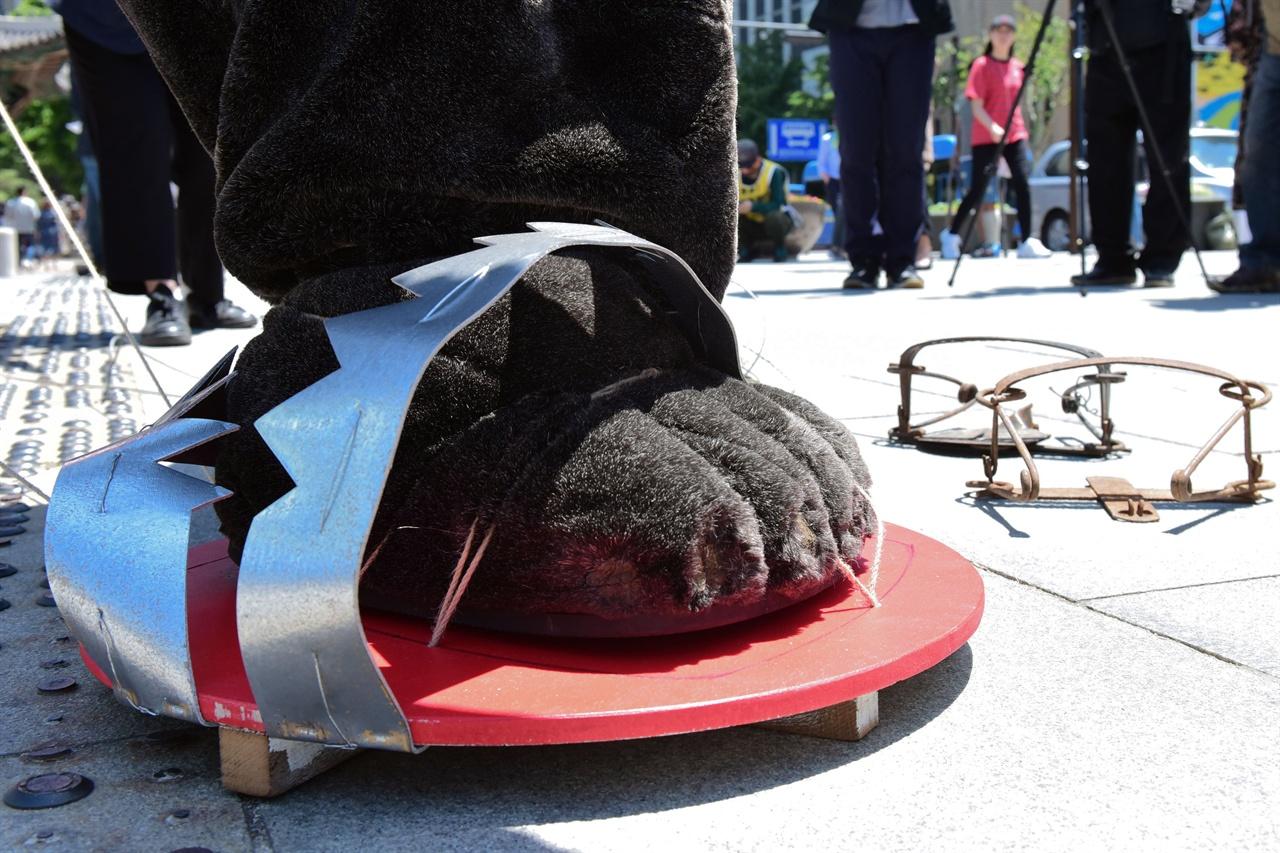 덫에 걸린 반달곰의 발 국립공원을지키는시민의모임, 녹색연합, 반달곰친구들 등 6개 환경운동단체 회원들이 21일 오전 서울 종로구 광화문광장에서 대형 덫에 걸려 고통스러워 하는 반달곰을 표현하는 퍼포먼스를 진행하고 있다. 2019.05.21