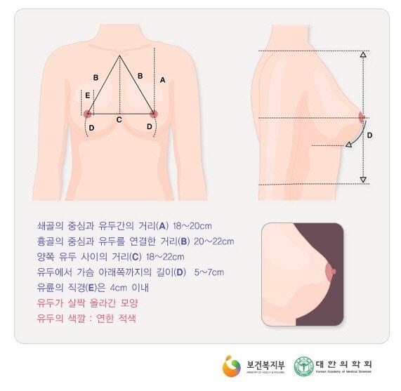 국가건강정보포털에 나와있는 아름다운 가슴의 기준