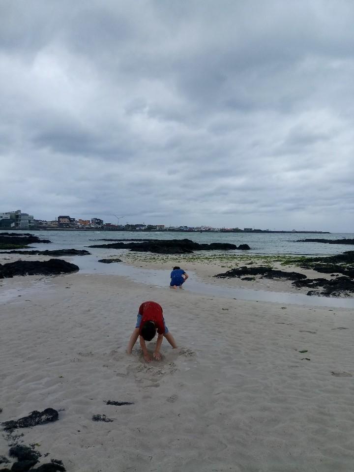 아이들이 바다에서 노는 풍경.