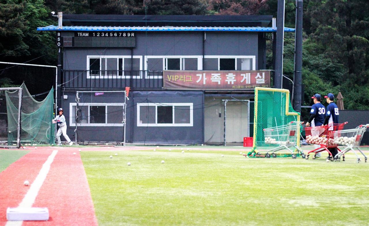 은평구VIP유소년야구단 선수들이 타격 훈련하고 있다.